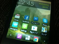 Samsung Galaxy y S5360B 1