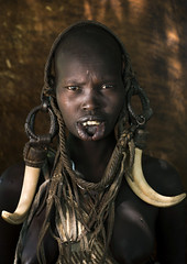 Mursi woman with tusks, Omo Ethiopia (Eric Lafforgue) Tags: 7979 omo mursi etipia tribo       thiopien etiopa  ethiopi etiopia  etiopien etiopija  etiyopya    ethiopie tusk lip decoration africanethnicity onegirl ornament bodytransformation ivory pastoralism lookingatcamera portrait ethnic snnpr tribal onepeople ethnology horned pastoral photography realpeople tradition warthog colorimage omovalley culture eth7979 hornofafrica outside southernnationsnationalitiesandpeoplesregion jewelry people proud teeth waistup oneperson bodymodification color eastafrica ethiopianethnicity beautifulwoman onegirlonly girl outdoor cows
