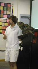 Wonders of Nature - Jul. 7, 2012 (Clearwater Public Library System Photos) Tags: summer birds animals kids youth children library july parrots 2012 wondersofnature natureshow clearwaterpubliclibrarysystem summer2012 clearwatereastlibrary