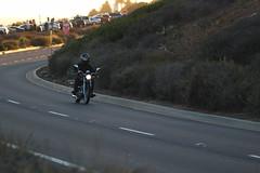IMG_6421 (OneStyle99) Tags: bike pv verdes palos bero abraam