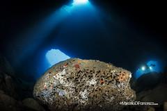 Dofi cave (Marcello Di Francesco) Tags: estartit medas underwater underwaterphotography amp areamarinaprotetta fixneo fotosub isolemedas lesilles mediterraneansea mediterraneo natura nauticam spagna spain wide