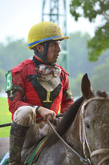 201608-21 (19) r7 over and the horses returned to the paddock - Ruben Silvera rode #5 Thirstforadventure (JLeeFleenor) Tags: photos photography md maryland marylandracing marylandhorseracing jockey   jinete  dokej jocheu  jquei okej kilparatsastaja rennreiter fantino    jokey ngi horses thoroughbreds equine equestrian cheval cavalo cavallo cavall caballo pferd paard perd hevonen hest hestur cal kon konj beygir capall ceffyl cuddy yarraman faras alogo soos kuda uma pfeerd koin    hst     ko  laurelpark