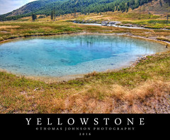Yellowstone (Thomas  Johnson Photography) Tags: outside outdoors canon digital 40d scenic beautiful blue spring yellowstone yellowstonenationalpark nationalpark hot steaming boiling wyoming water 2016 thomasjohnsonphotography thomasjohnsonphotography grass tree pine pinetrees