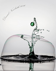 _MG_4413v2 (danielnowbuth) Tags: liquidart drops dropcollision highspeedphotography water liquid bubble