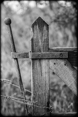 Gate. (CWhatPhotos) Tags: cwhatphotos fence post catch opening open close wood wooden gate dof depth field bokeh barb barbed wire view photographs photograph pic pics photo photos images image foto fotos that have which contain with canon 5d mk iii eos dslr sacriston county durham summer august 2016 time 100mm prime lens black white mono monochrome