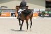 IMG_8131 (dreiwn) Tags: dressage dressur dressuur pferd reitturnier turnierreiten pferdesport horse horseback horseriding equestrian reitverein dressurprüfung kandare doublebridle reiten pferde reitplatz ridingarena