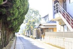 _MG_4409 (Lck.R) Tags:  japan jp street  canon 6d