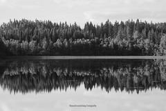 Spiegeleien Nummer 1 (Rauschverteilung Fotografie) Tags: landscape lake mirror forest trees wood bw blackandwhite sweden