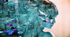 -pond girl (Hodaka Yamamoto) Tags: lomography double doubles doubleexposure multipleexposure multiexposure filmcamera filmphotography film portrait pond lake negative fish carp silhouette turquoise lotusflower