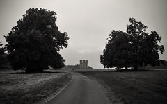 Hiorne Tower (hall1705) Tags: hiorne folly building architecture structure blackwhite mono trees arundel path d3200 nature nikon