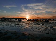 Classic Sandbanks Sunset 235/366 (dawn.v) Tags: sunset poole sandbanks dorset uk england august summer 2016 coast sea sand 366daysin2016 2016yip boats