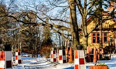 Villa Tomtebo (Jori Samonen) Tags: villa tomtebo house building winter snow tree plant pot stand path meilahti helsinki finland nikon d3200 180550 mm f3556 nikond3200 180550mmf3556 table