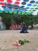 . (NoDurians) Tags: schirme umbrella umbrellas dornerplatz wien vienna 1170 spaceandplace regenwald