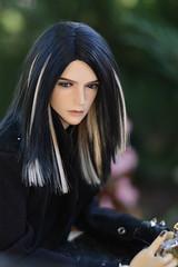 My favorite guy ^^ (Olinka *) Tags: iplehouse sid felix hybrid loongsouldoll body boy bjd dollphoto