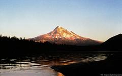 (Nik Stopsack) Tags: canon f1 pnw f fujisuperiaxtra400 washington lostlake oregon mthood sunset