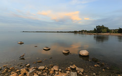 Final Fling with Summer (Note-ables by Lynn) Tags: summer georgianbay swimming water shoreline