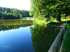 Bodensee Hinterland > Holzweiher - Lake Constance back country > Wood pond (warata) Tags: 2016 deutschland germany sddeutschland southerngermany schwaben swabia oberschwabenupperswabia schwbischesoberland badenwrttemberg bodenseehinterland lakeofconstanceinland neukirch bodenseekreis holzweiher weiher see lake lakeconstancebackcountry wood pond