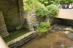 DUG_7320r (crobart) Tags: fallingwater frank lloyd wright kaufmann bear run nature reserve pennsylvania
