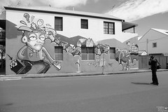 0D6A3982 - Street Art and the Photographer (Stephen Baldwin Photography) Tags: street art photographer laman st john newcastle nsw australia urban city house terrace building