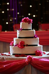"Custom Designed Wedding Cake • <a style=""font-size:0.8em;"" href=""http://www.flickr.com/photos/79112635@N06/7155370192/"" target=""_blank"">View on Flickr</a>"