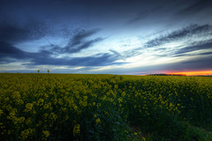 Sunset over Darrington (Chris McLoughlin) Tags: sunset landscape yorkshire darrington westyorkshire tokina1116mm chrismcloughlin sonya580 fxb2g