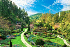 Sunken Garden (boingyman.) Tags: canada canon garden bc victoria butchartgardens 1022 butchartgarden sunkengarden t2i boingyman