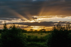 Sun Rays (Jeff 05) Tags: