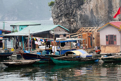 Halong Bay - Vietnam (Rachel De Stijl) Tags: lunch boat sailing vietnam caves halongbay catbaisland floatingvillages rachelpressick