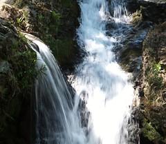 Free Flow (Glenda Hall) Tags: ireland summer sunlight mountain water newcastle flow waterfall fuji may finepix flowing splash ulster shutterspeed countydown splashes exr slievedonard f770 glendahall