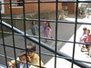 als vogels in een kooi (JoséDay) Tags: kleuterschool playingkids irondetails comocellsenunagàbia