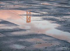 Reflection (Chicken) Tags: sanfrancisco california bridge pink sunset sky usa reflection rain clouds puddle evening pier glow unitedstates baybridge getty inverted puddles