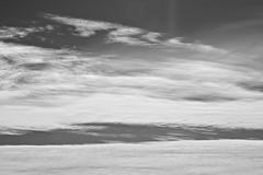 Auckland skies (Zelda Wynn) Tags: sky blackandwhite bw nature weather skyscape wind scenic auckland nz artgalleryofnsw cloudscape troposphere inspiredbyalfredstieglitz zeldawynn