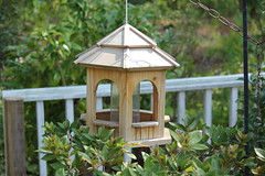 wood flowers house bird home canon garden nc north gazebo carolina wilmington 55250 t2i
