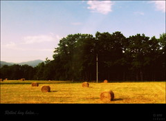 Rolled hay bales... (i s h a n i . . .) Tags: hay toulouse bales champ lourdes midipyrnes