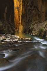 Quest for Light (D Breezy - davidthompsonphotography.com) Tags: summer utah glow narrows patience virginriver reflectedlight usazionnationalpark