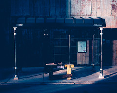 no parking (B R A N D) Tags: light sunset shadow chicago bus sign warning canon 50mm evening december cta noparking 28mm authority busstop transit 7d brand 2012 30d mrbluesky illinios ©2012 krisbrand kristoferbrand