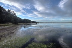 back to the lake (-hedgey-) Tags: lake clouds tuggerah thegalaxy berkeleyvale mygearandme mygearandmepremium mygearandmebronze mygearandmesilver mygearandmegold mygearandmeplatinum mygearandmediamond