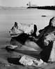 isola sacra e la vecchia centrale, fiumicino (levantina) Tags: tmax fiumicino mamiya645e blackwhitephotos isolasacra sekor80mm28 cartabaritata rolleivintage stampabn