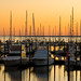 Golden Isles Marina 4
