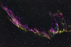 6995 CFHT (plndrw) Tags: ha sii cygnus cfht veilnebula oii narrowband ngc6995 flt132 qsi683