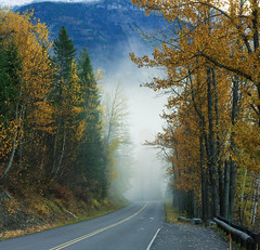 Fog Rolls In On The Going-to-the-Sun Road - Glacier National Park, Montana (jetguy1) Tags: autumn trees fall leaves fog seasons glaciernationalpark fogrollsinonthegoingtothesunroadglaciernationalparkmontana