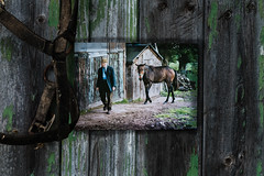 Traces of the past. (jayneboo) Tags: odc old past traces family memories barn doors flaking paint fred fatherinlaw horses photo