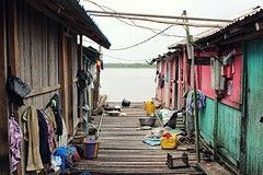 Living on the Lakeshore (alexlebienheureux) Tags: nzulezo woodenhouse bamboo beautiful chaos cable clothesline diminishing perspective electricity ghana house houses informal lakeshore poverty residential building sad settlement slum wood wooden