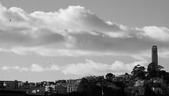 Slip slidin' away (Michael Dunn~!) Tags: bw clouds coittower photowalking photowalkingsolo sanfrancisco sky