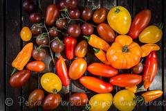 Colorful Harvest (harald.neuner) Tags: tomate grn krutergewrze rot natur jahreszeit herbst farben essen kochen9ersat chili gelb orange gemse rum tirol austria at