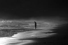 Supplication (blueteeth) Tags: man figure silhouette bowing ocean shore beach birds seamist highkey monochrome blackandwhite