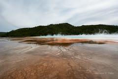 DSD_1491 (pezlud) Tags: yellowstone nationalpark landscape geyserbasin grandprismaticspring midwaygeyserbasin geyser park