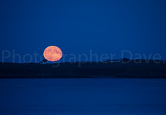 Harvest Moon. (Photographer Dave C) Tags: mygearandme mymindseye moon moonrise northernirealnd orlockpoint bangor beauty canon canon40d canonofficial photography photographerdave passion photograph sky stunning sea seascape 2016 awesome autumn harvestmoon