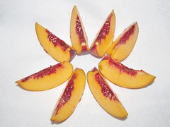 Yellow Peach Wedges (Pest15) Tags: nationaleatapeachday peach wedges bitesize fruit yellowpeach foodart circular