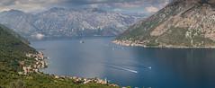 Looking across the Bay of Kotor (*Hairbear) Tags: view blue warm water mountains montenegro bayofkotor swimtrek sea